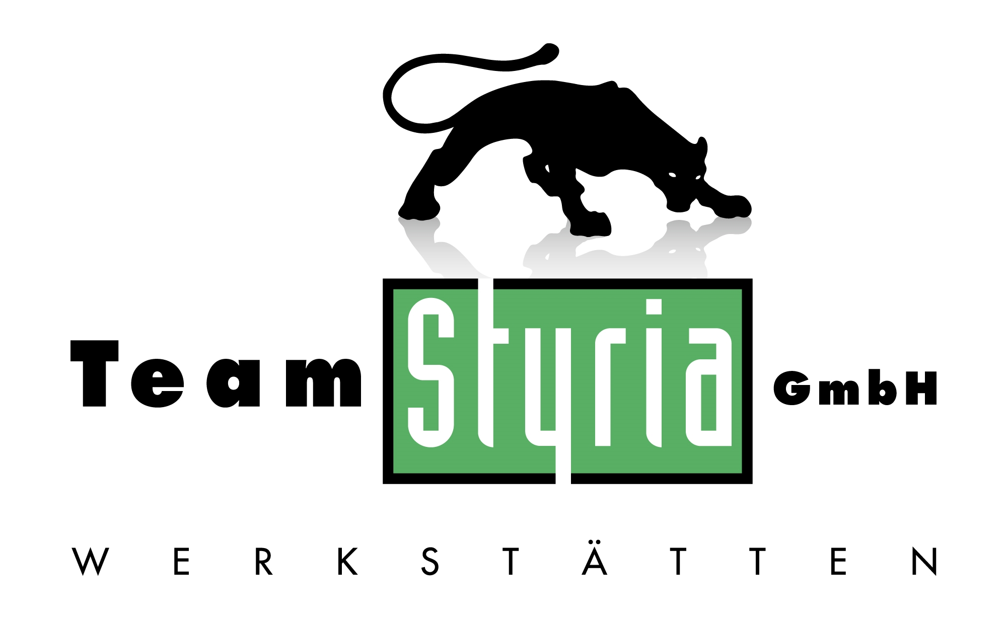 Team Styria Werkstätten GmbH Werk 4170